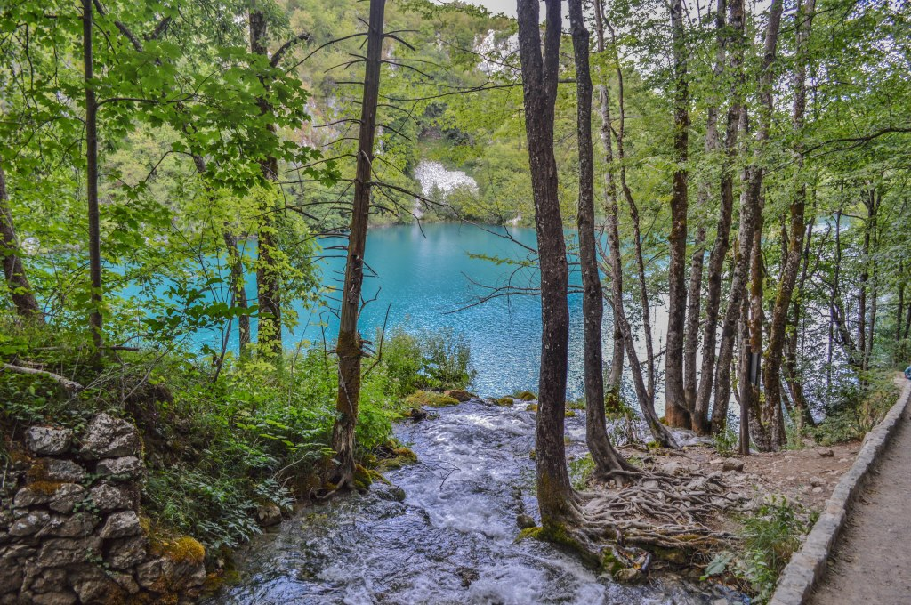 Plitvice National Park, river and trees