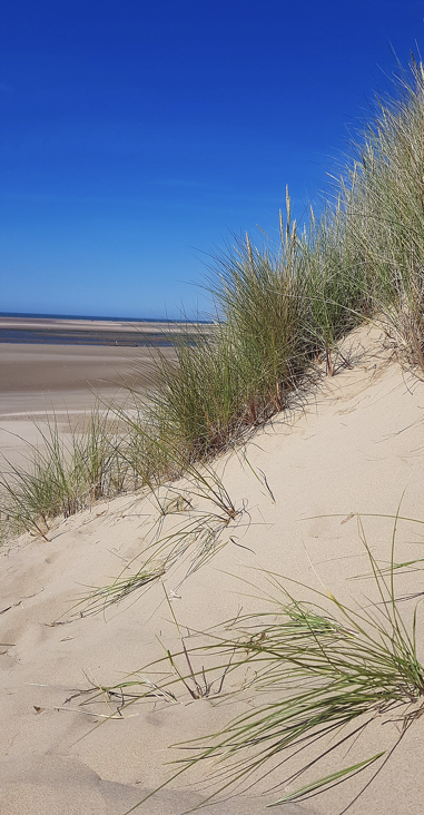 Sand dunes at Brancaster